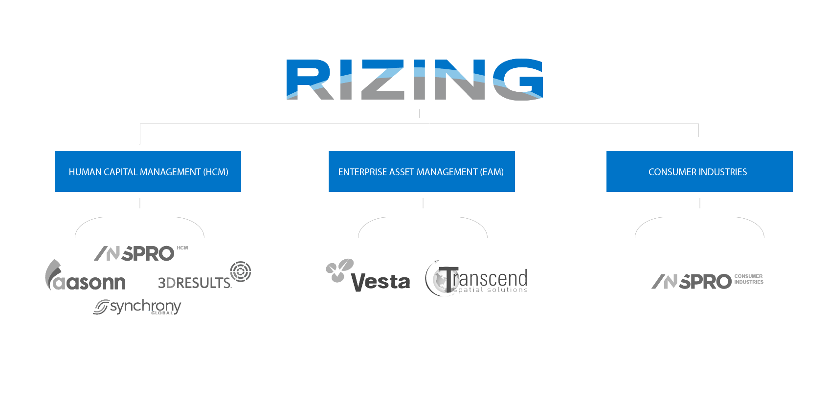 Rizing LLC Company Structure