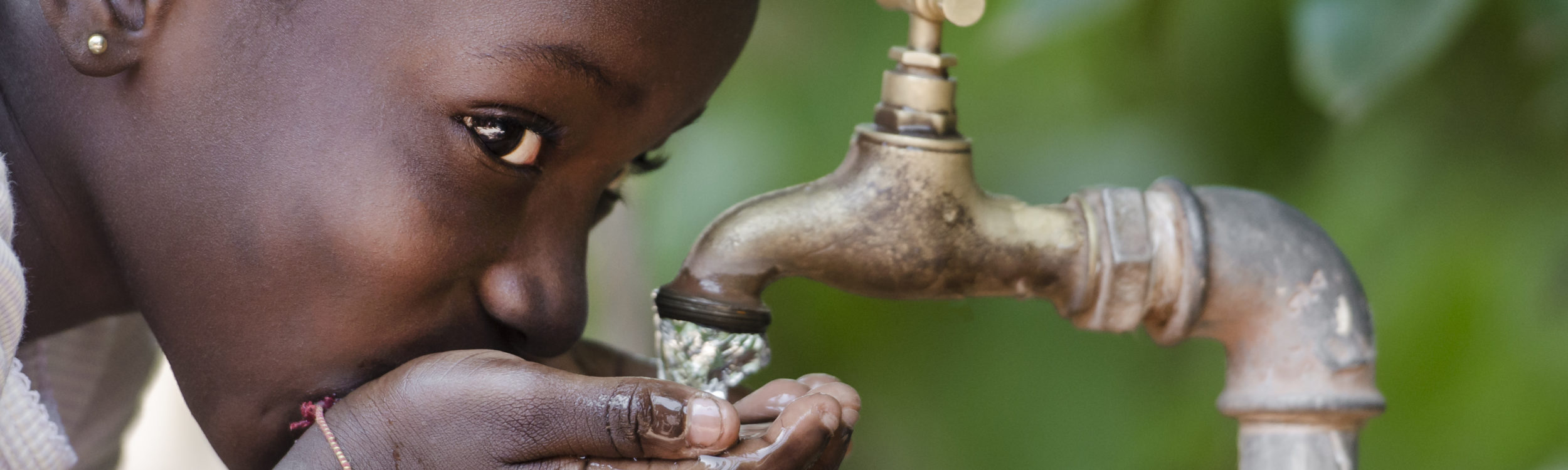 Finding My Passion Through Wine to Water: Achieving Clean, Accessible Water for All featured image