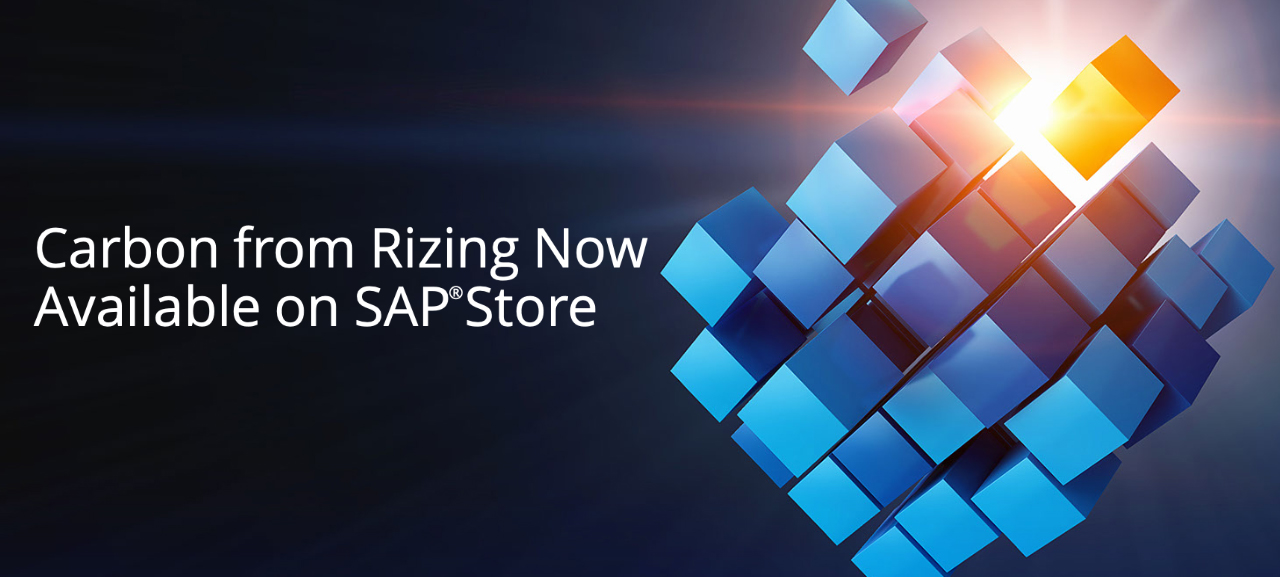 Carbon from Rizing Now Available on SAP Store featured image